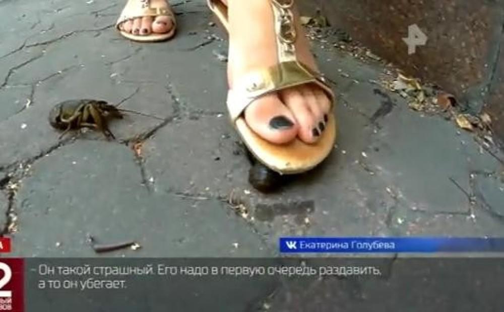 Молодая девушка топчет каблуками, видео кончают студенткам внутрь