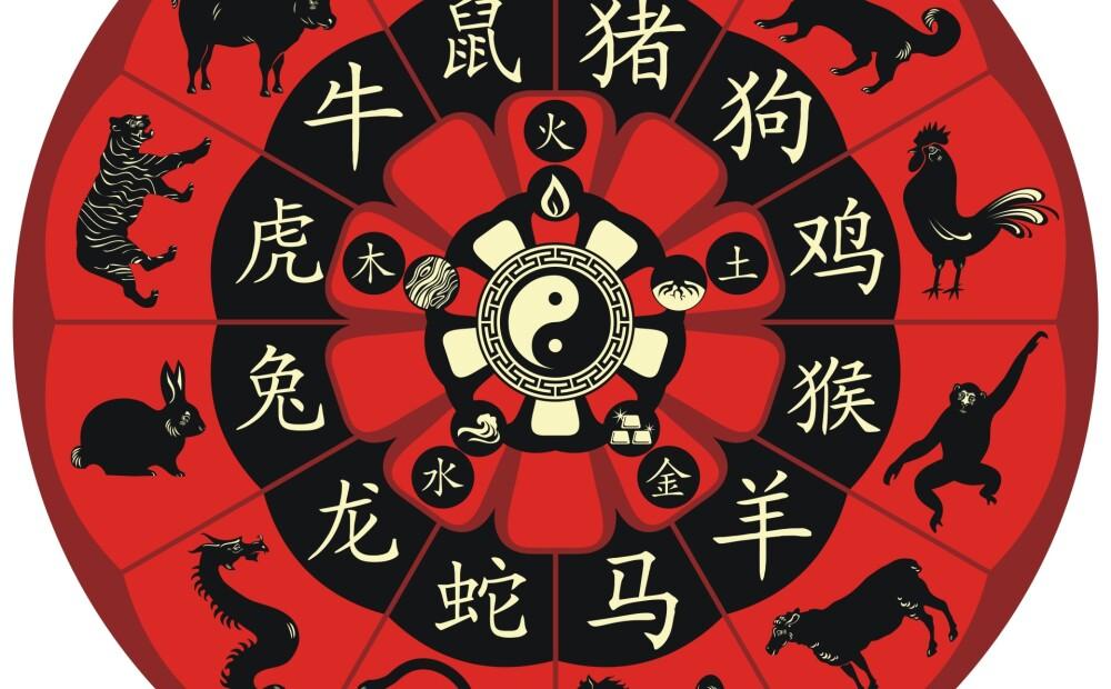 картинки китайского зодиака амарок полноприводному пикапу