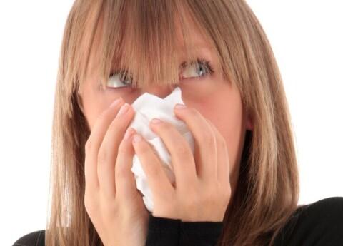 Alerģija