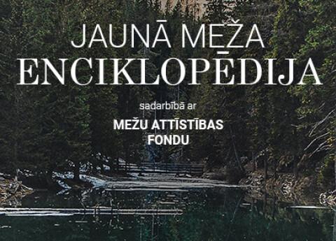Jaunā meža enciklopēdija