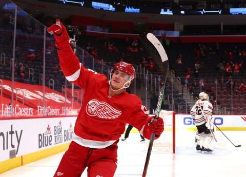 "Detroitas ""Red Wings"""